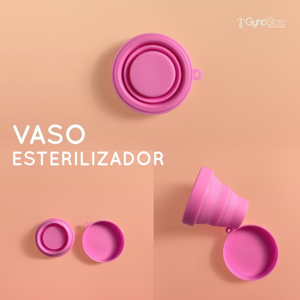 Vaso esterilizador _2